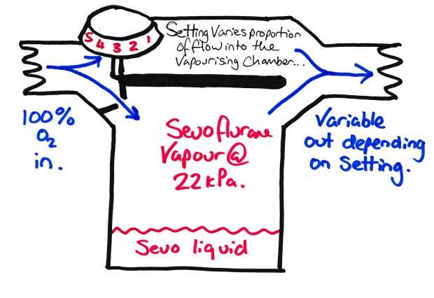 vapor5